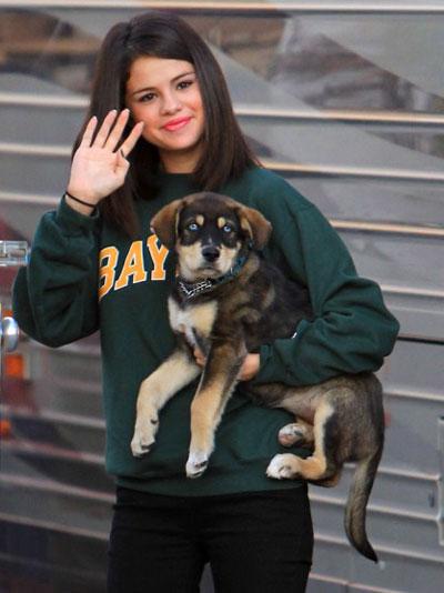 Selena Gomez si Justin Bieber au adoptat un catel