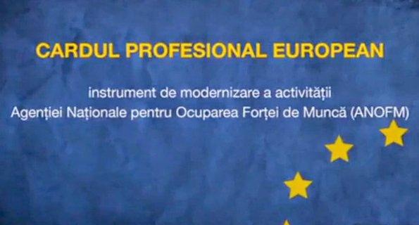 cardul profesional european.