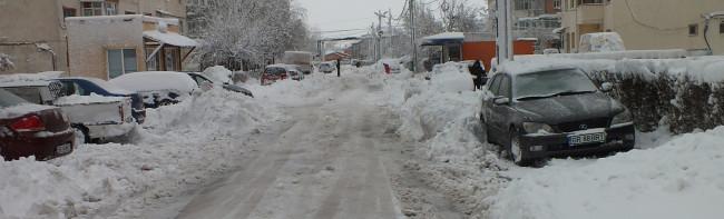 iarna 8