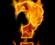 intrebare arzatoare